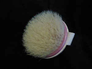 Photo of Dry Body Brush from Ecotools