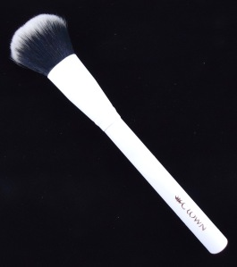 Photo of Pro Blush Brush from Crown Brush