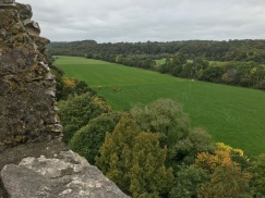 View from atop the castle